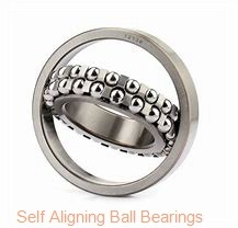 95 mm x 250 mm x 55 mm  SIGMA 10419 M self aligning ball bearings