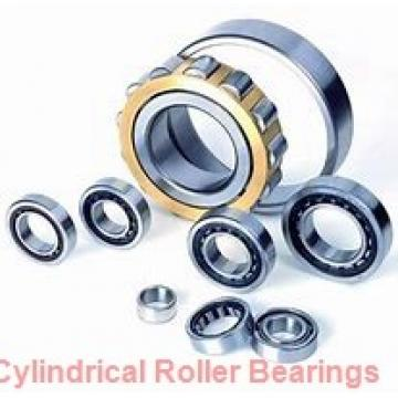 300 mm x 460 mm x 74 mm  NSK NF1060 cylindrical roller bearings
