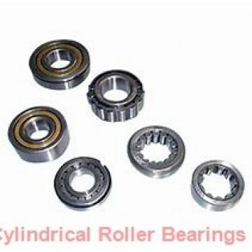 100 mm x 215 mm x 47 mm  NACHI NU 320 cylindrical roller bearings