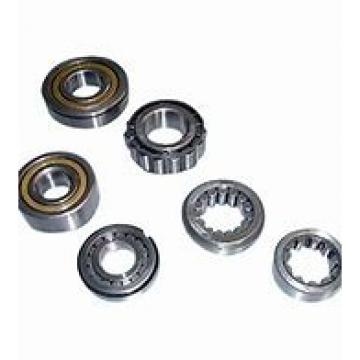 Toyana NF3096 cylindrical roller bearings