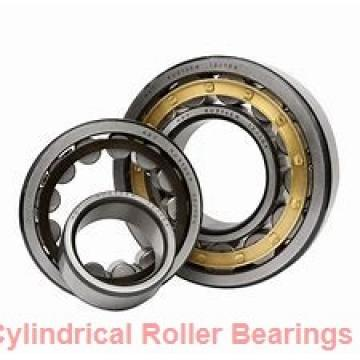 500 mm x 670 mm x 128 mm  ISO NF39/500 cylindrical roller bearings