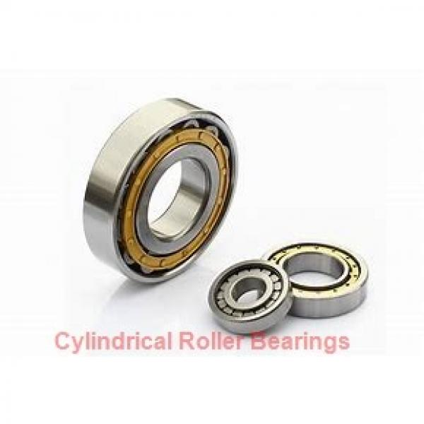 75 mm x 160 mm x 55 mm  NACHI NU 2315 E cylindrical roller bearings #1 image